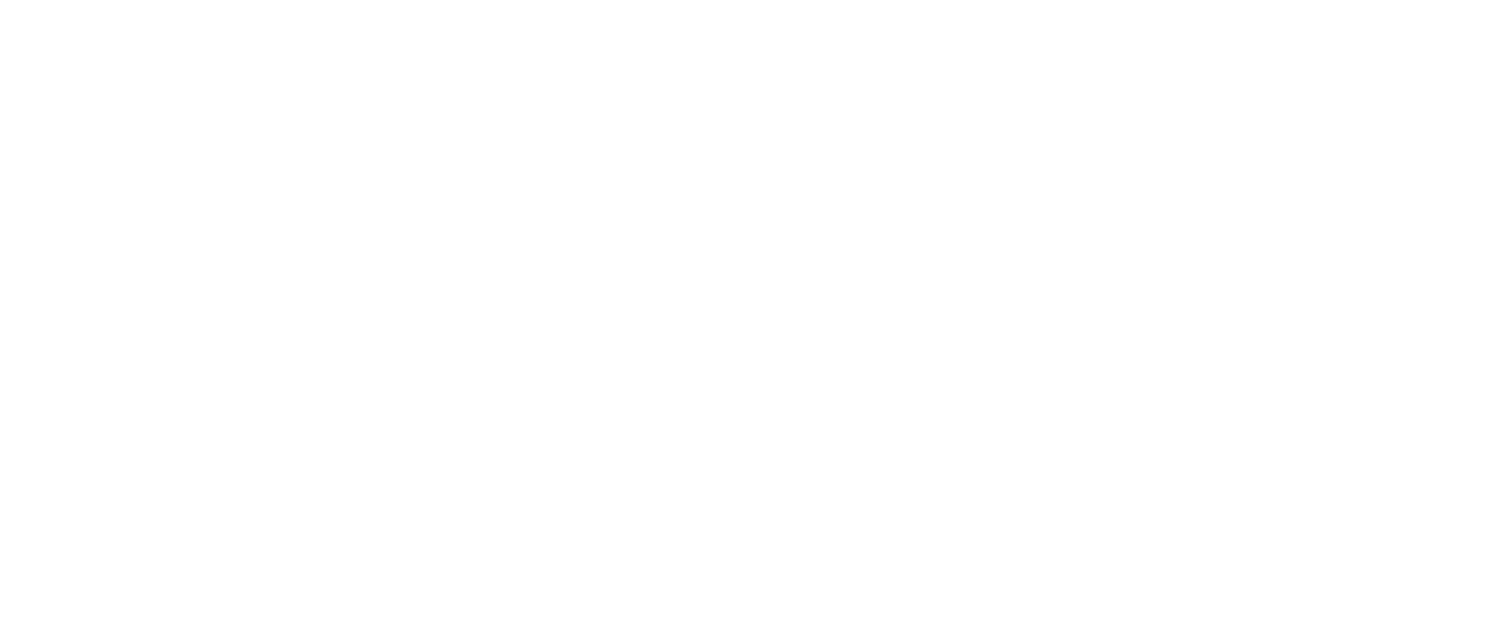 Team Wendy logo2